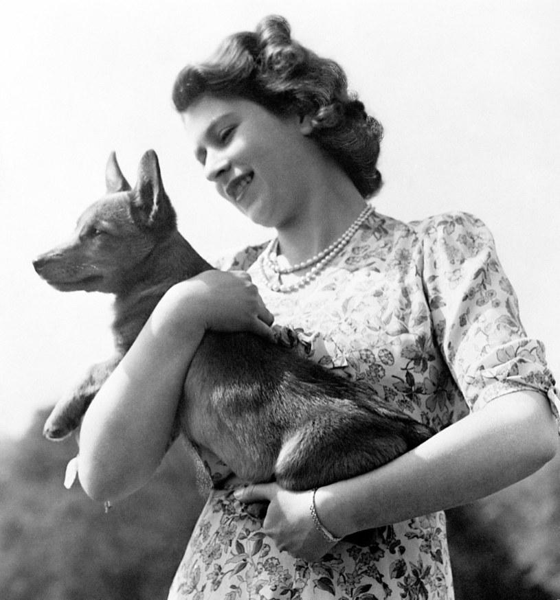 Młoda królowa Elżbieta z pieskiem rasy corgi na rękach /PA Wire/Press Association Images /East News