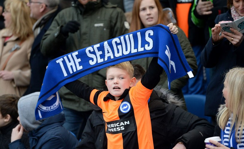 Młody fan Brighton & Hove Albion /GLYN KIRK /AFP