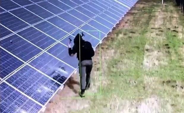 Młotkiem zniszczył panele na farmie fotowoltaicznej. Ponad 300 tys. zł strat [FILM]