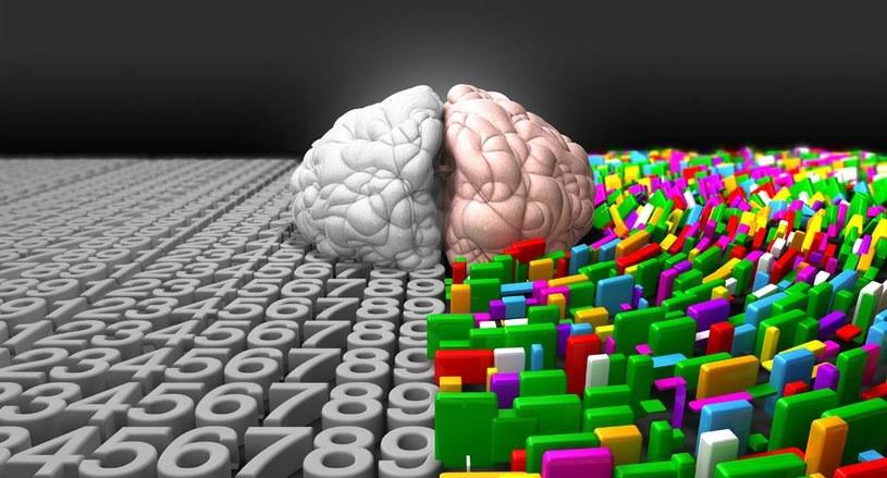 Modafinil to lek, który wzmacnia inteligencję /123RF/PICSEL