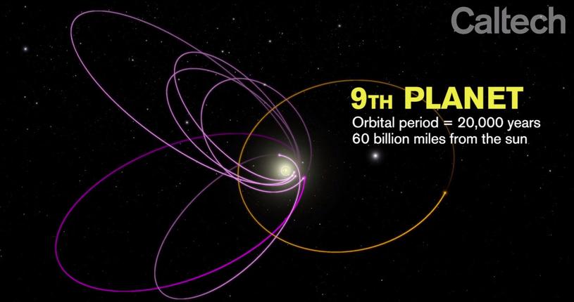 Model orbit ciał Pasa Kuipera uwzględniający istnienie 9 planety /materiały prasowe