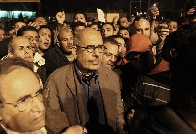 Mohamed ElBaradei  (C) /AFP