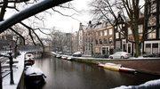 Mój Amsterdam. Rower osobisty