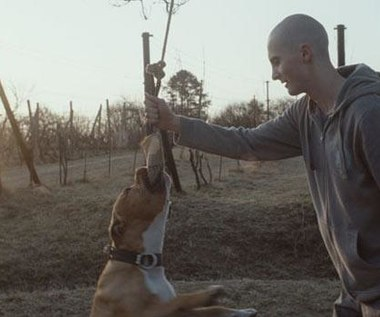 """""""Mój pies killer"""" [recenzja]: Przyjaciele na dobre i na złe"""