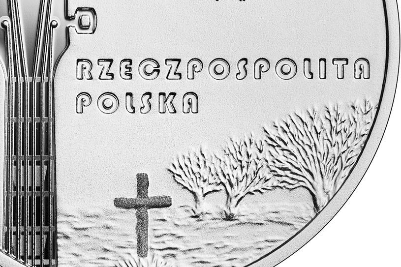 Moneta kolekcjonerska NBP: Historia polskiej muzyki rozrywkowej - Krzysztof Klenczon, 10 zł, detal awersu /NBP