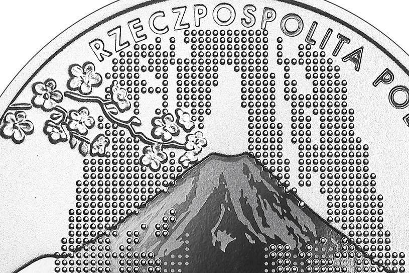 Moneta kolekcjonerska NBP: Polska Reprezentacja Olimpijska Tokio 2020, 10 zł, detal awersu /NBP