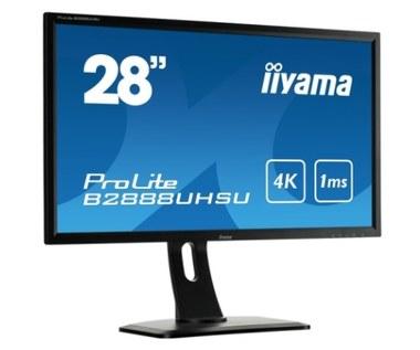 Monitor 4K marki iiyama
