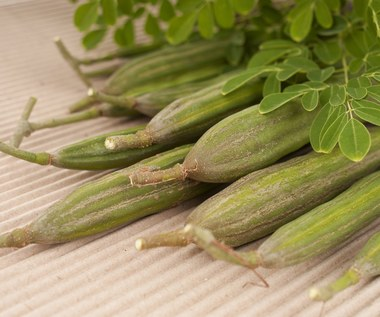 Moringa - ziele, które pomaga na cukrzycę