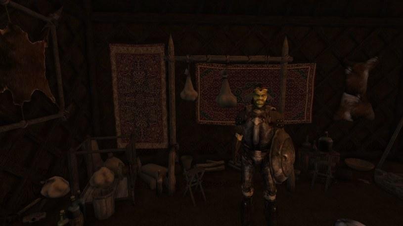 Morrowind /materiały prasowe