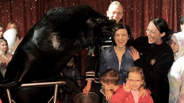 Mors Boris z Niemiec polubił Kasię Cichopek do tego stopnia, że obdarzył ją swoim całusem! /Agencja W. Impact
