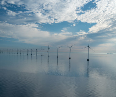 """Morskie farmy wiatrowe mają być """"made in Poland"""". Ale dobrowolnie i bez żadnego przymusu"""