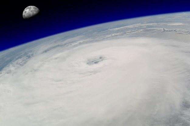 Morskie farmy wiatrowe mogą powstrzymać huragany /123RF/PICSEL