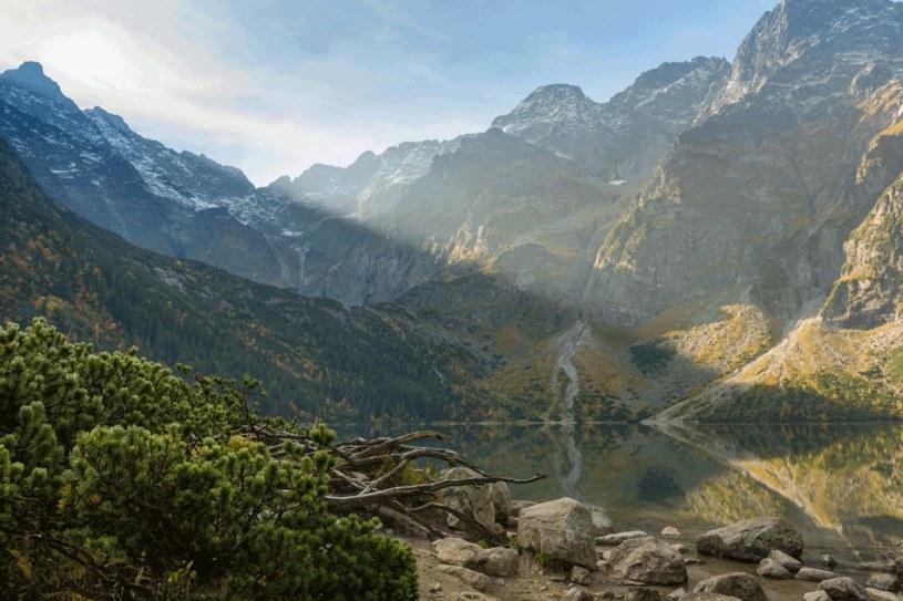 Morskie Oko położone jest w Dolinie Rybiego Potoku /123RF/PICSEL