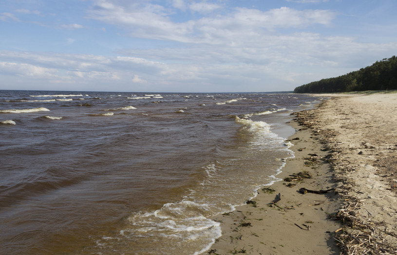Morze Bałtyckie; zdj. ilustracyjne /123RF/PICSEL