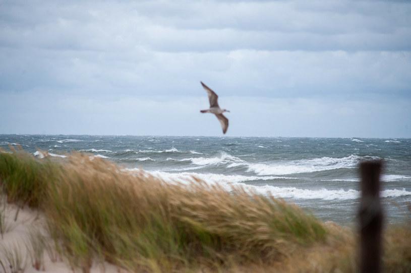 Morze Bałtyckie; zdj. ilustracyjne /HUBERT BIERNDGARSKI/ /Reporter