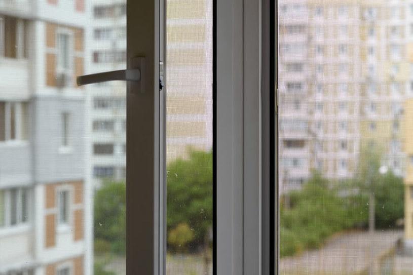 Moskitiera w oknie /©123RF/PICSEL