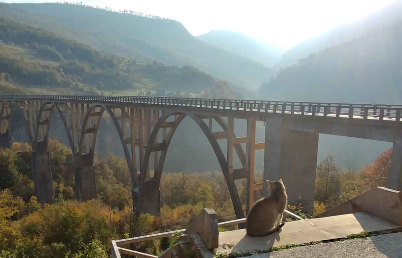 Most na rzece Tara /Styl.pl