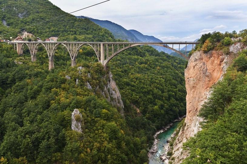 Most na Tarze /Elena Sistaliuk /123RF/PICSEL