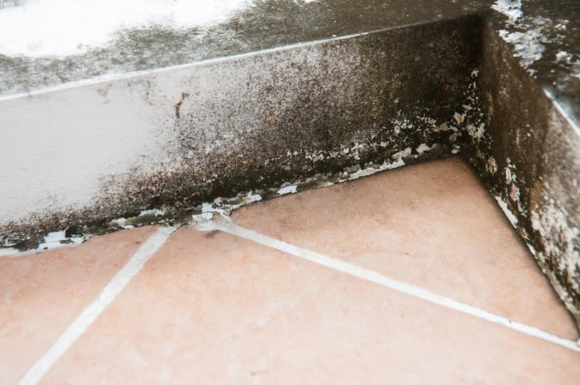 Mostek termiczny /©123RF/PICSEL