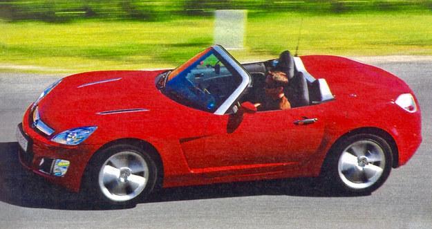 Motoryzacja w swoim najlepszym wymiarze. Samochód z charakterem i dla kierowców lubiących jazdę. Za 120 tys. zł można poczuć się jak hollywoodzka gwiazda na Bulwarze Zachodzącego Słońca. /Motor