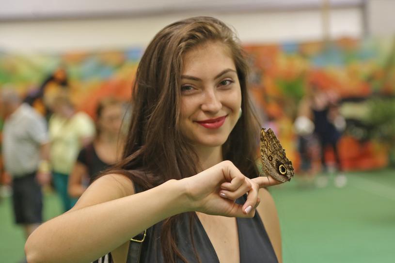 Motyla Zagroda na Słowacji /Tatralandia/TMR a.s. /materiały prasowe