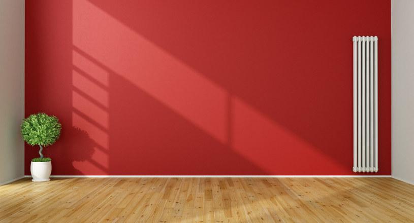 Może jedna czerwona ściana wystarczy? /123RF/PICSEL