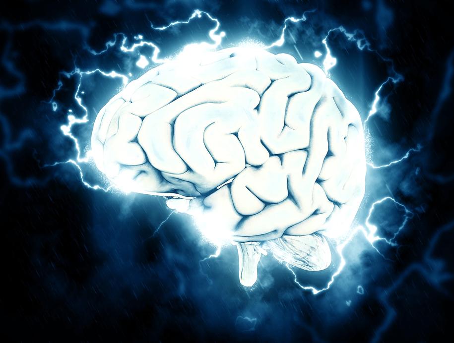 """""""Mózg jest maszynką do przewidywania przyszłości"""" /pixabay.com /"""