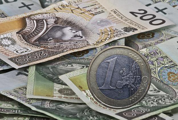 Możliwe jest ustalenie kursu polskiej waluty do euro w relacji jeden do jednego, fot. Leszek Kotarba /Agencja SE/East News