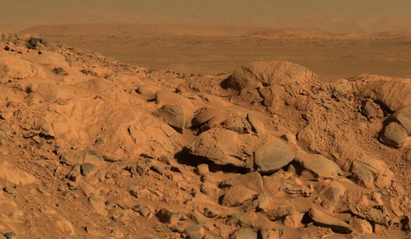 Możliwe, że na Marsie nigdy nie było warunków niezbędnych do życia. /AFP