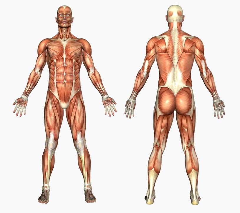 Możliwości ludzkiego ciała są właściwie nieograniczone /123RF/PICSEL