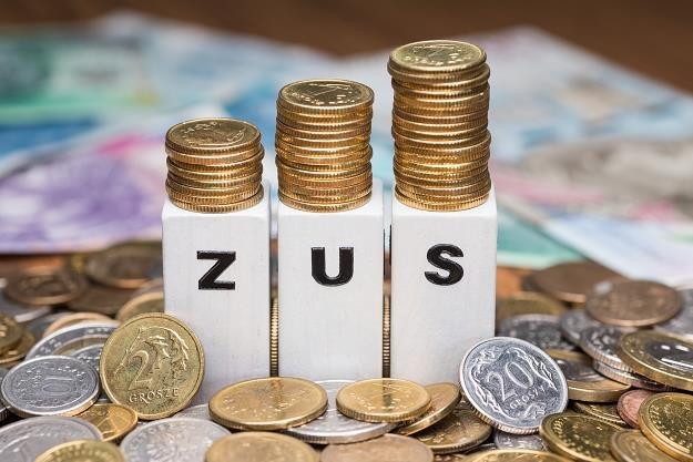 Można obniżyć składki na ZUS. Fot. Arkadiusz Ziółek /East News