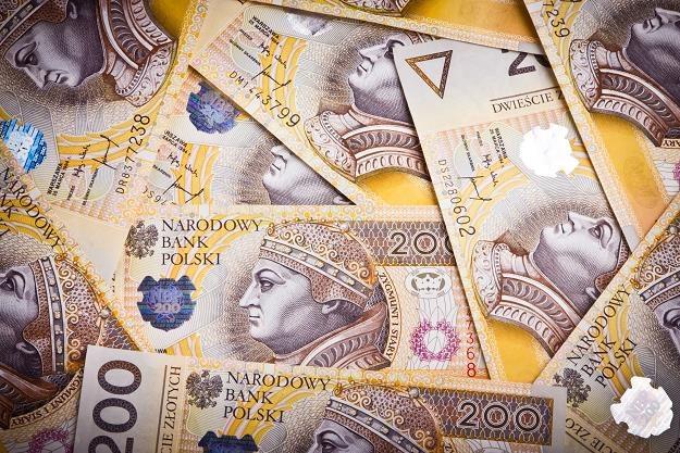 Można płacić niski podatek od wysokich zarobków... /©123RF/PICSEL