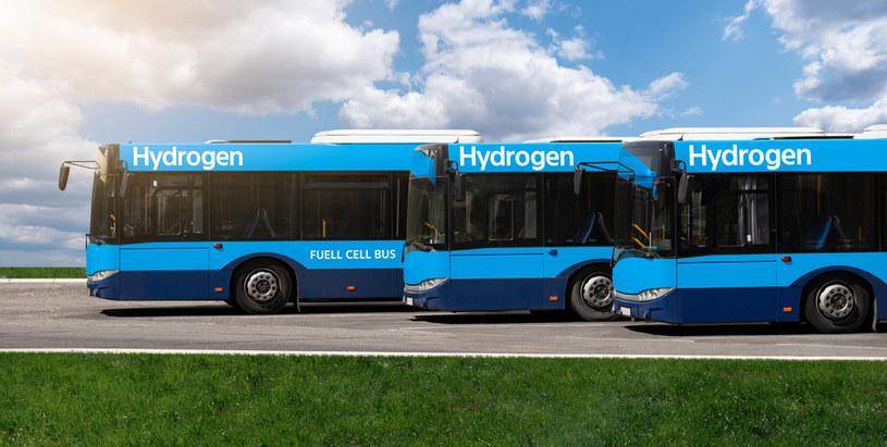 MPK w Krakowie planuje zakup 40 autobusów zasilanych wodorem. Zdjęcie ilustracyjne /123RF/PICSEL