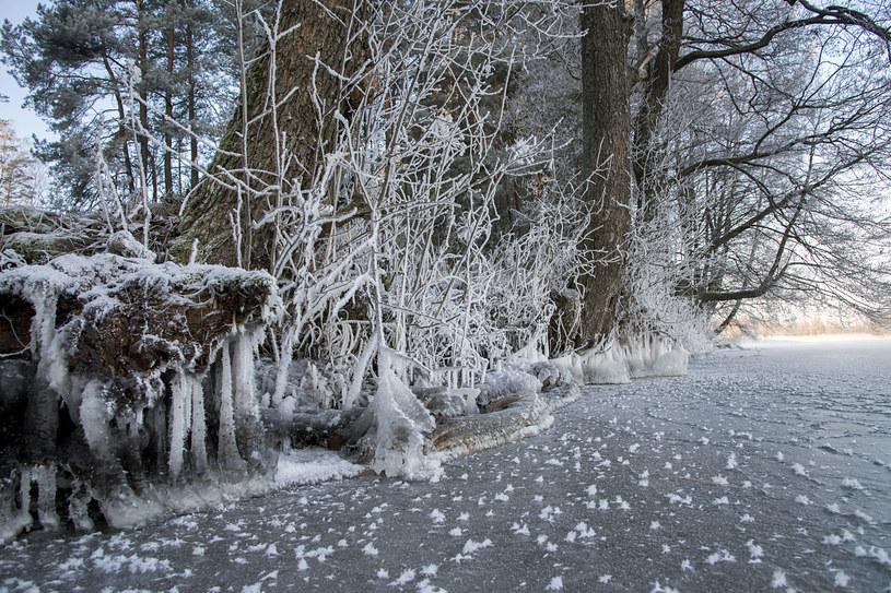 Mroźny poranek na Suwalszczyźnie /Andrzej Sidor /Agencja FORUM