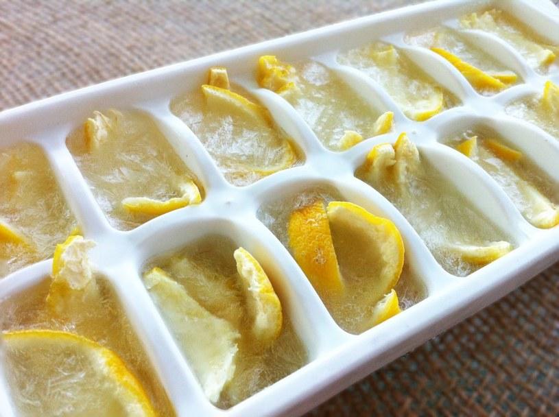 mrożone kawałki cytryny /© Photogenica