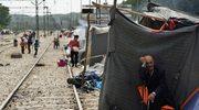 MSZ: Straż graniczna nie ostrzelała uchodźców z Syrii