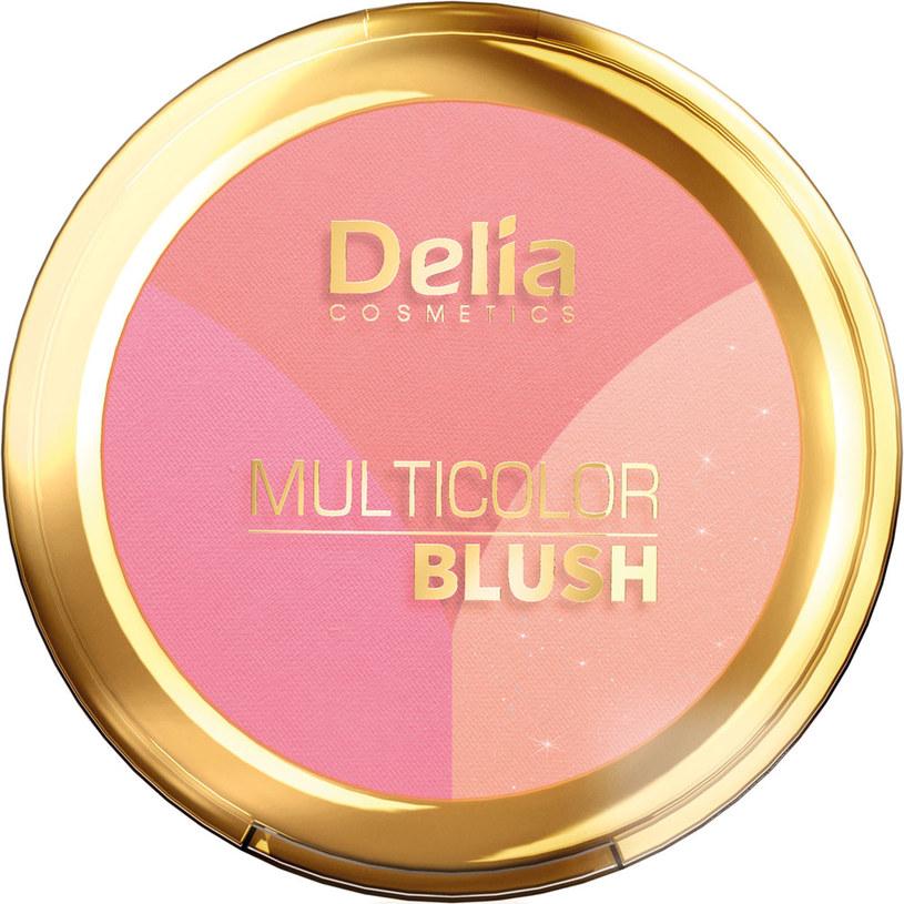 Multifunkcyjny róż Multicolor Blush Delia Cosmetics /Styl.pl/materiały prasowe