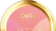 Multifunkcyjny róż Multicolor Blush Delia Cosmetics