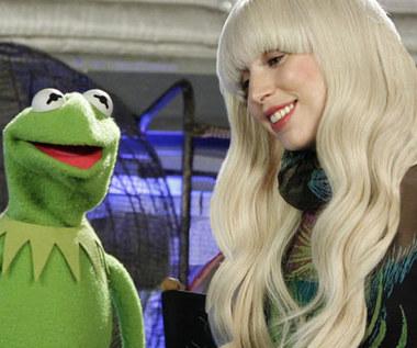 """""""Muppety"""": Lady Gaga stoi poza prawem?"""