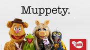 """""""Muppety"""": Polska premiera serialu """"Muppety"""" już 8 listopada w TV Puls!"""