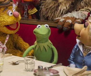 """""""Muppety: Poza prawem"""" [trailer]"""