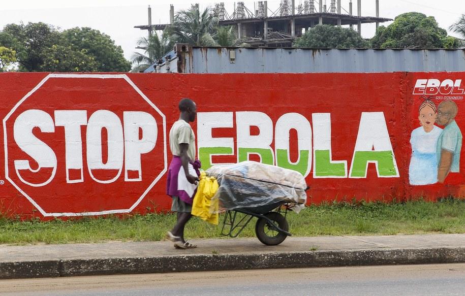 "Mural z hasłem ""Stop Ebola"" w Monrovii, stolicy Liberii /AHMED JALLANZO  /PAP/EPA"