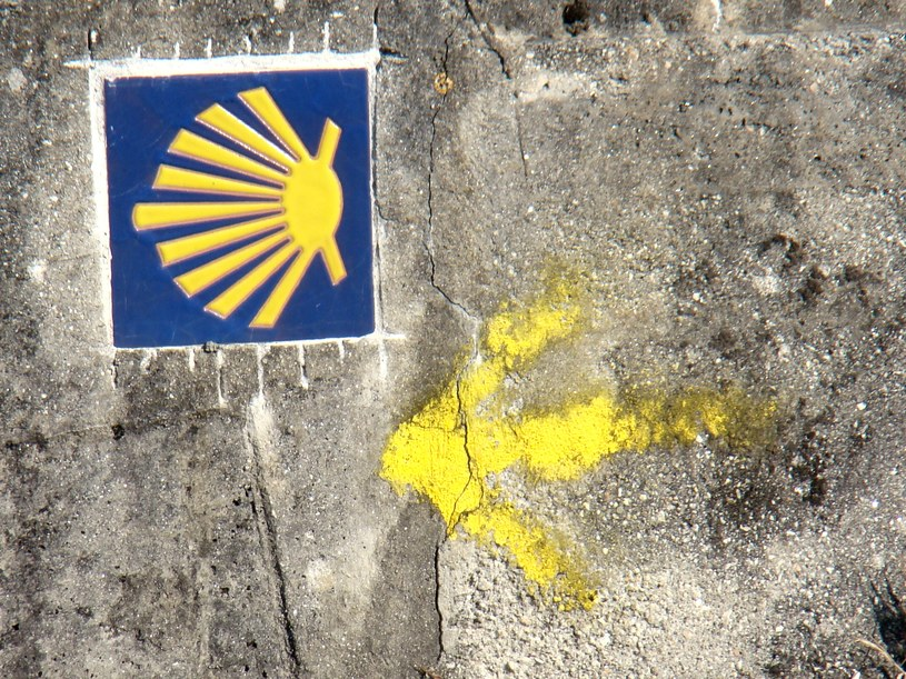 Muszla i żółta strzałka - charakterystyczne znaki szalku św. Jakuba /INTERIA.PL