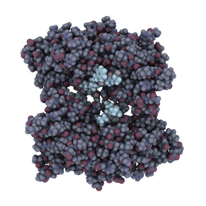 Mutacja w genie BRCA1 /©123RF/PICSEL