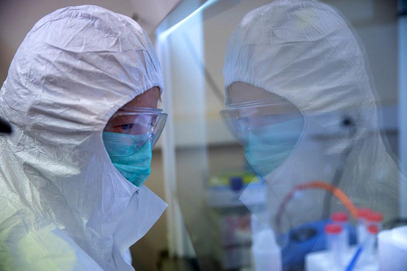 MZ podało nowe dane dotyczące koronawirusa /Jakub Walasek /Reporter