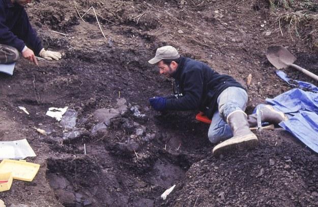 Na Alasce odkryto czaszkę niewielkiego kuzyna strasznego tyranozaura /PAP/EPA/PEROT MUSEUM OF NATURE AND SCIENCE / HANDOUT /PAP/EPA