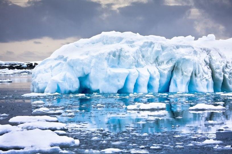 Na Antarktydzie kiedyś panowały temperatury jak obecnie w Kaliforni /123RF/PICSEL