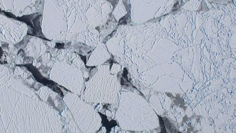 Na Antarktydzie mikroplastiku jeszcze nie było /materiały prasowe