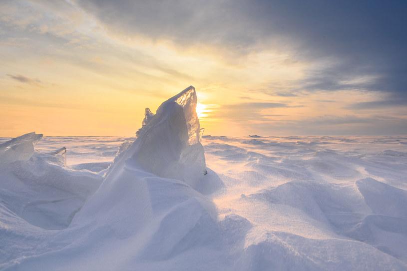 Na Antarktydzie znaleziono jarosyt /123RF/PICSEL