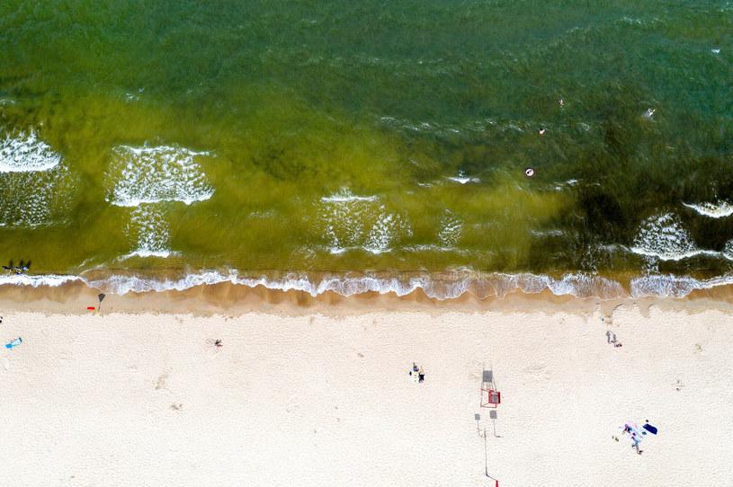 Na Bałtyku znajduje się jedna z największych martwych stref /Przemek Swiderski/REPORTER /Reporter